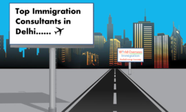 Top 5 Immigration Consultants in Delhi – World overseas immigration consultancy